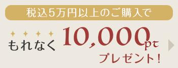 5万円以上のご購入でもれなく1万ポイントプレゼント!