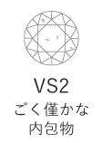 VS2 ごく僅かな内包物
