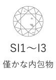 SI1~I13 僅かな内包物